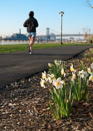 running photos, new york city running, fresh pressed,