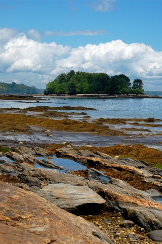 Maine Coast Winslow Park
